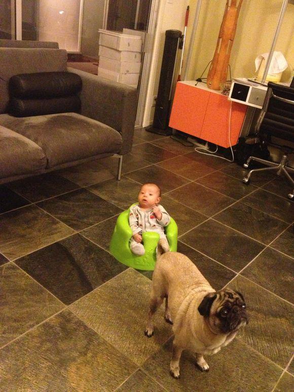 Just sittin' around the house