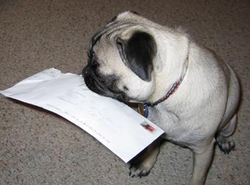 get_mail